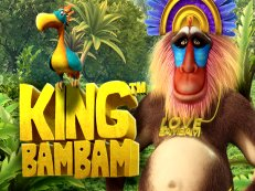 king bam bam slot stakelogic