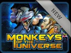 monkeys of the universe slot stakelogic