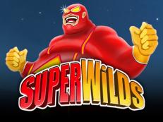 super wild slot