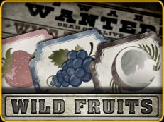 wild fruits slot endorphina