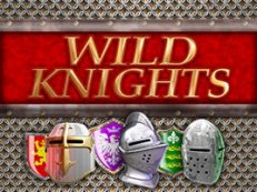 wild knights slot barcrest