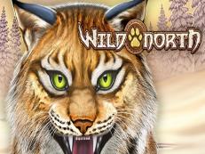 wild north slot